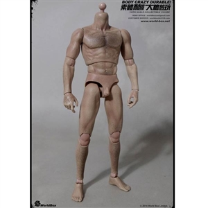 Boxed Figure: World Box Hair Body (WB-AT008)