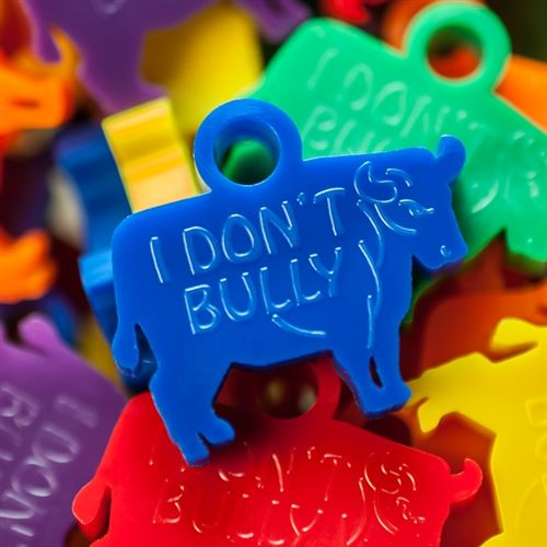 Anti-bully Awards - Bold Bull Award