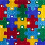 Puzzle Piece Student Award