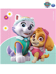 PAW PATROL SKYE AND EVEREST NAPKINS PAPER TWO-PLY 20CT