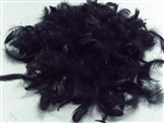 GOOSE COQUILLE FEATHERS BLACK
