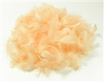 GOOSE COQUILLE FEATHERS CREAM 20G