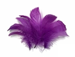 GOOSE COQUILLE FEATHERS PURPLE 20G