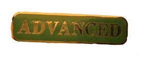 Silver & Green Advanced Award  Bar