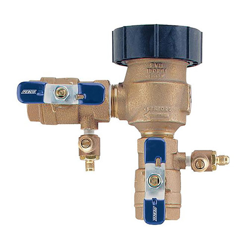 Febco 767FR-150 1-1/2 inch Freeze-Resistant PVB Backflow Preventer