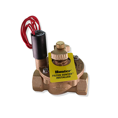 Hunter 1 in. Brass Valve with filter sentry