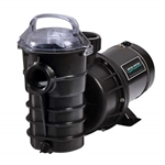 Pentair Dynamo pool pump for above ground pools Single Speed without Cord 15 HP