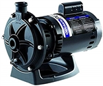 Polaris Booster Pump with 60 Hz Motor