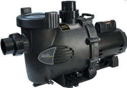 Jandy Water Feature Medium Head Pump 230 115 VAC 80 GPM