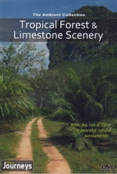 Tropical Forest & Limestone Scenery Virtual Walk Treadmill or Elliptical Workout - The Ambient Collection