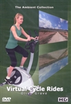 Olive Grove Virtual Cycle Ride or Treadmill Workout - The Ambient Collection