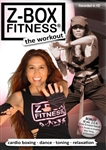 Z Box Fitness The Workout