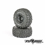 Pit Bull Rock Beast XOR SCT 2.2/3.0 Basher Medium Pre-Mounted