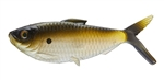 13 Fishing - Coalition Bait Co The Dine Swimbait