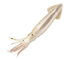 Berkley Saltwater Gulp Squid