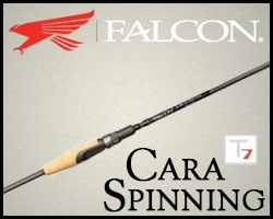 Falcon Rods Cara T7 Spinning