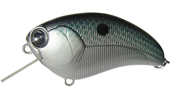 Ima Square Bill Crankbait