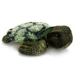 Splish Splash the Stuffed Sea Turtle by Aurora