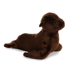 Destination Nation Small Sea Lion Stuffed Animal by Aurora