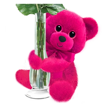 Hot Pink Huggums Plush Teddy Bear by First and Main