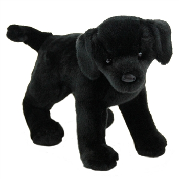 Chester the Plush Black Lab Puppy by Douglas