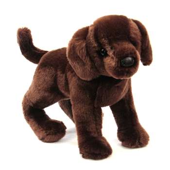 Cocoa the Plush Chocolate Lab Puppy by Douglas