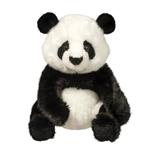 Paya the Sitting Plush Panda Bear by Douglas