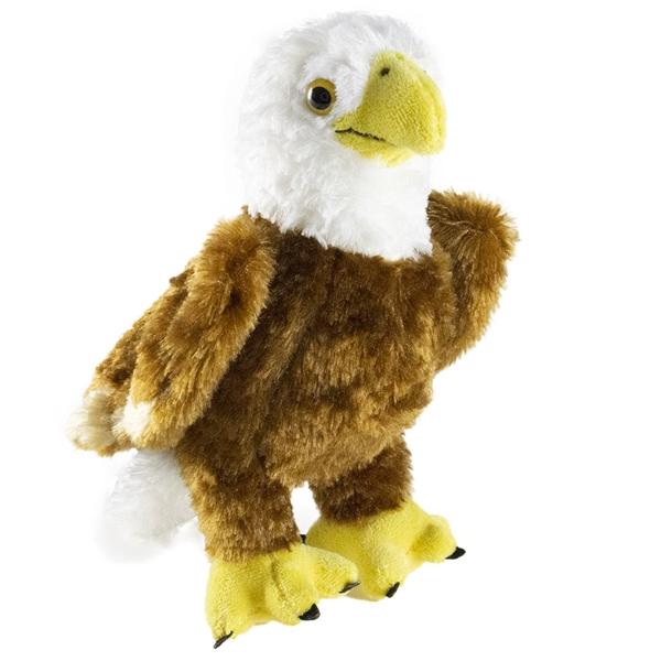 Colbert The Stuffed Bald Eagle By Douglas At Stuffed Safari