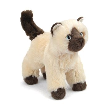 Hilda the Little Plush Himalayan Cat by Douglas