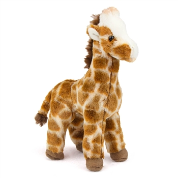 Ginger the Little Plush Giraffe by Douglas