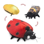 Full Body Ladybug Life Cycle Puppet by Folkmanis Puppets
