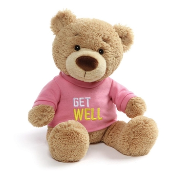 Get Well Teddy Bear with Embroidered Pink Shirt by Gund