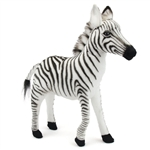 Handcrafted 12 Inch Lifelike Baby Zebra Stuffed Animal by Hansa