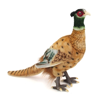 Handcrafted 12 Inch Lifelike Pheasant Stuffed Animal by Hansa