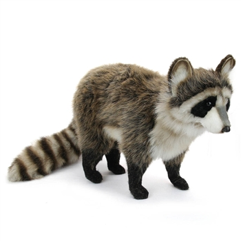 Handcrafted 18 Inch Lifelike Raccoon Stuffed Animal by Hansa