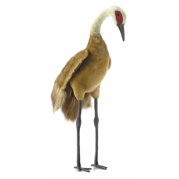 Handcrafted 29 Inch Life-size Sandhill Crane Stuffed Animal by Hansa