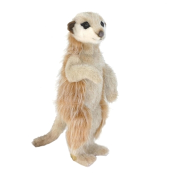 Lifelike Meerkat Stuffed Animal by Hansa
