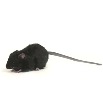 Handcrafted 5 Inch Lifelike Black Mouse Stuffed Animal by Hansa