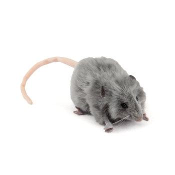 Handcrafted 5 Inch Lifelike Gray Mouse Stuffed Animal by Hansa