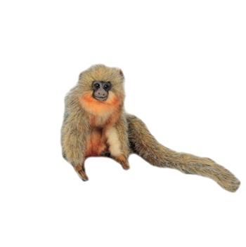 Lifelike Titi Monkey Stuffed Animal by Hansa