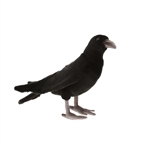 Lifelike Black Crow Stuffed Animal by Hansa
