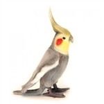 Handcrafted 9 Inch Lifelike Gray Cockatiel Stuffed Animal by Hansa