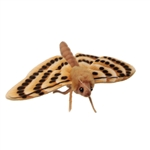 Lifelike Moth Stuffed Animal by Hansa