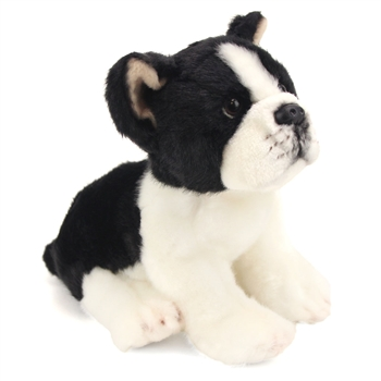 Lifelike Stuffed Boston Terrier Puppy by Nat and Jules