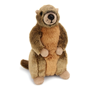 Plush Yellow-Bellied Marmot Conservation Critter by Wildlife Artists