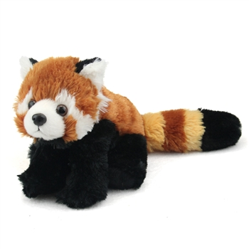 Stuffed Lesser Panda Mini Cuddlekin by Wild Republic