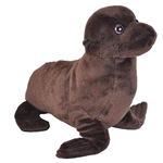 Cuddlekins Sea Lion Stuffed Animal by Wild Republic