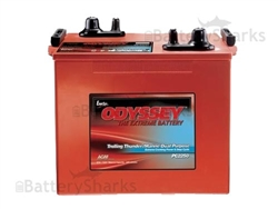 Interstate Batteries A6TL