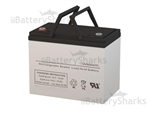 Pegasus Battery LDT12-70