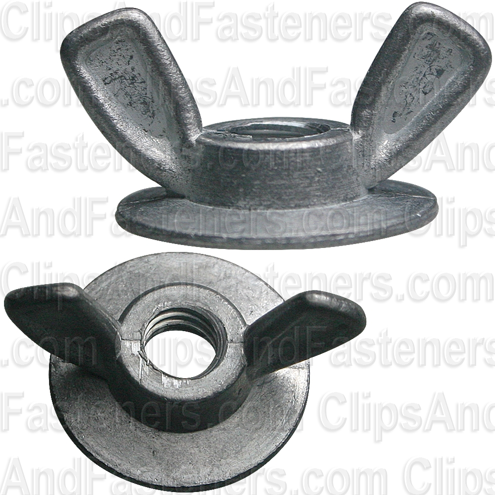 Washer Base Wing Nut 1/4\